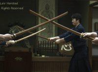この画像は、サイトの記事「剣道形 二段 おすすめ YouTube無料視聴動画 まとめてご紹介!」のイメージ写真画像として利用しています。